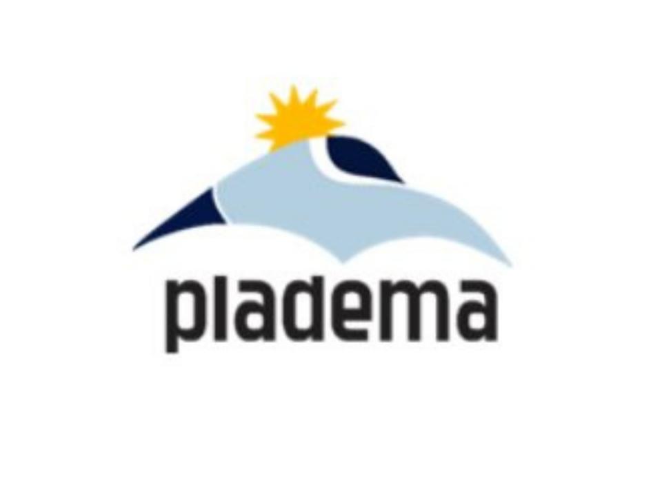 Logo del Instituto de Plasmas Densos (PLADEMA)